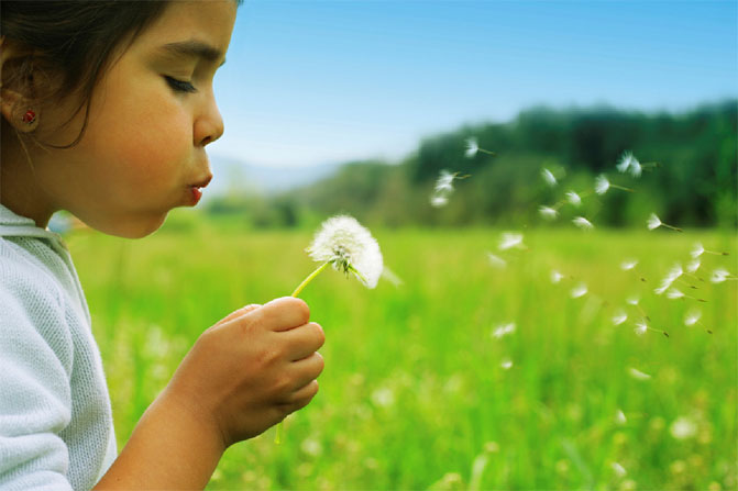 Image of a child blowing a dandelion clock